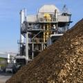 GE построит крупнейшую электростанцию на биомассе
