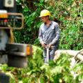 Последствия урагана «Ирма» для кубинской энергосистемы